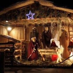 Crăciun Fericit!
